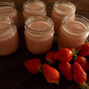 Yaourt au psyllium (sans produit laitier)
