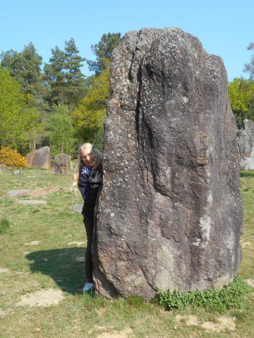 Tambour aux menhirs de Monteneuf en Brocéliande